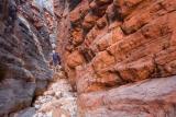 Narrows, Vulkathunha-Gammon Ranges