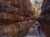 Amongst the gorges, Gammon Ranges
