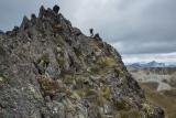 Ridge-walking, Eyre Mountains