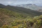 Approaching Mount Windsor Tableland