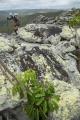 Cliff-edge boulders, Cape York Peninsula