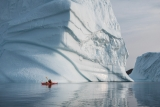 Paddling past icebergs, East Greenland