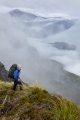 Above Cunaris Sound, Fiordland National Park