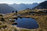 On the Dark Cloud Range, Fiordland National Park