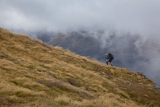 On the Heath Mountains, Fiordland National Park