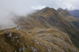 The Heath Mountains, Fiordland National Park
