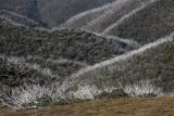Scorched ridges