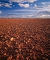 Gibber desert, South Australia