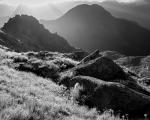 On the Dark Cloud Range, Fiordland