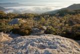 Morning fog, Capertee Valley