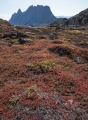 Autumn tundra, Bear Islands