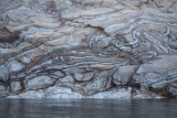 Folded rock, Milne Land shoreline