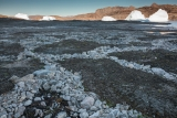 Patterned ground and icebergs, Milne Land