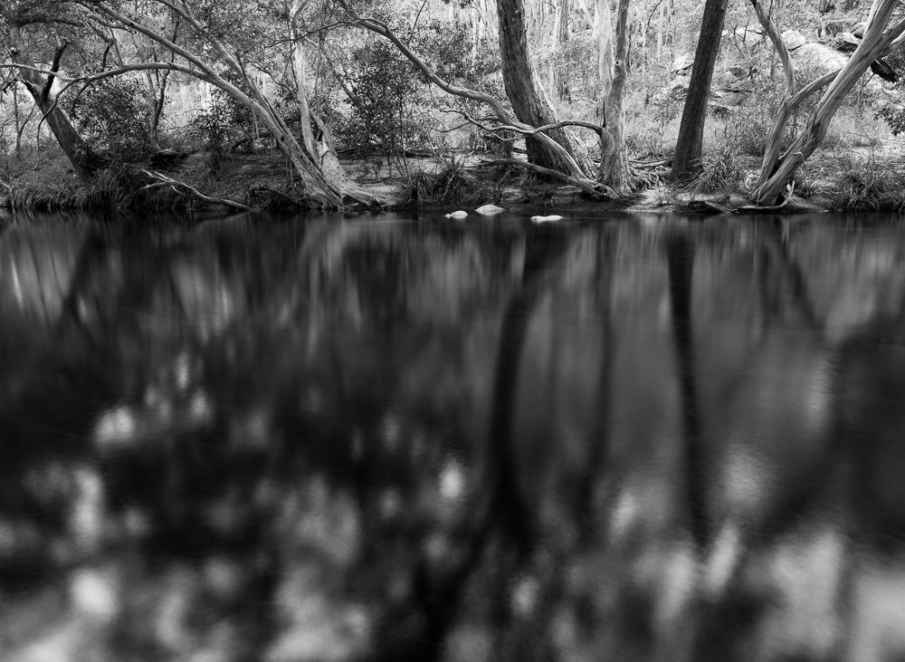 Riverbank shadows