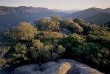 Heathland, Kanangra-Boyd Wilderness
