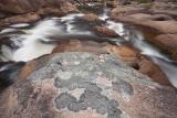 Lichens and rapid, Kowmung River