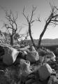 Boulders, Heavitree Range