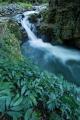 Paterson River cascade