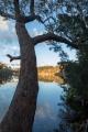 Willinga Creek lagoon, Meroo National Park