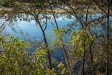 Willinga Creek lagoon