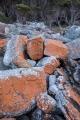 Tumbled sandstone, Nadgee Nature Reserve
