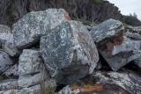 Grey boulders, Nadgee Nature Reserve