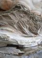 Sea cliff, Botany Bay National Park