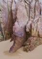 Pink strata, Mimosa Rocks National Park