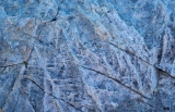 Rock pattern, Dingwall Mountains, Fiordland