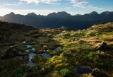 Meadow below Koinga Peak, Fiordland