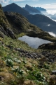 Tarn below Koinga Peak, Fiordland