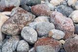 Lichened stones, Lake Manapouri