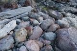 Pink riverstones, Lake Manapouri