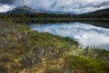 Mire, eastern Fiordland