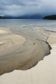 Beach estuary, Lake Manapouri