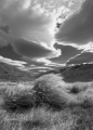 Tussock and cloud, Garvie Mountains