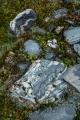 River cobbles, Marks Flat