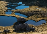 Nest of tarns, Mount Titiroa, Fiordland