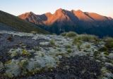 Moss banks at dawn, Hunter Mountains, Fiordland