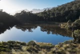 Bushline tarn, Red Hills
