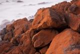 Algaed boulders