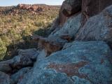 Lichens, Mawson Plateau