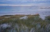 Dunes, Mt William National Park
