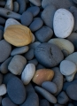 Shoreline cobbles, South Coast, Southwest NP, Tas