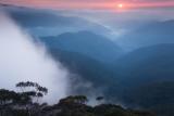Sunrise, Kowmung country