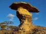 Threatened Gardens of Stone