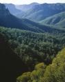 Govett Gorge
