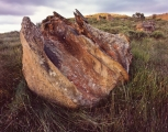 Sandstone tors, Mount Hay Range