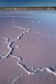 Salt lake lines