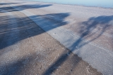 Salt Paperbark shadows